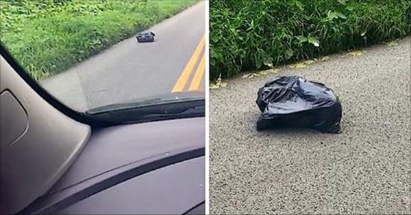 Sieviete ceļa malā pamanīja atkritumu maisu. Atverot maisu viņa bija šokēta (VIDEO)