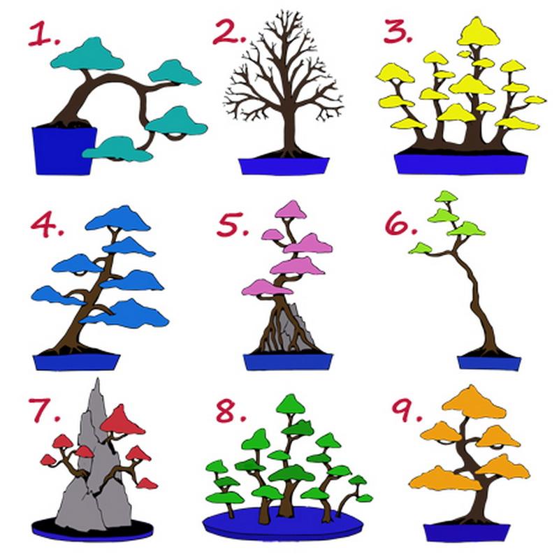 """Britu tests """"Kādam darbam jūs esat paredzēti"""". Izvēlieties koku un uzziniet!"""