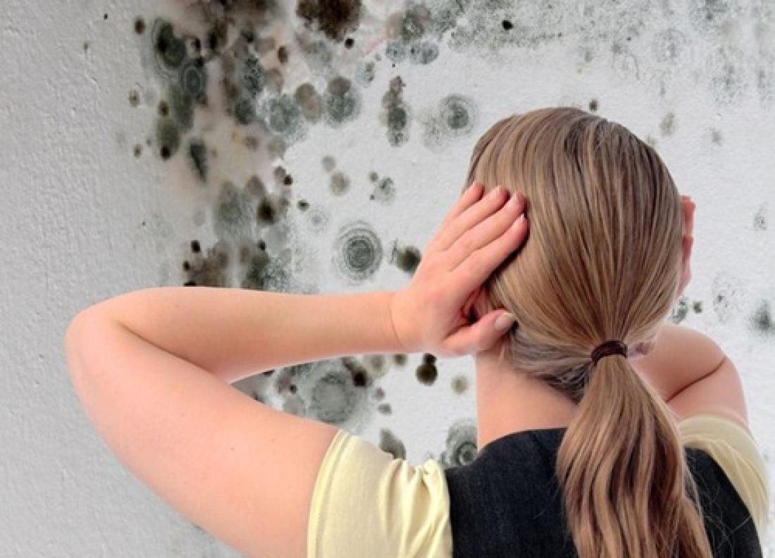 Kā tikt vaļā no pelējuma uz sienām?