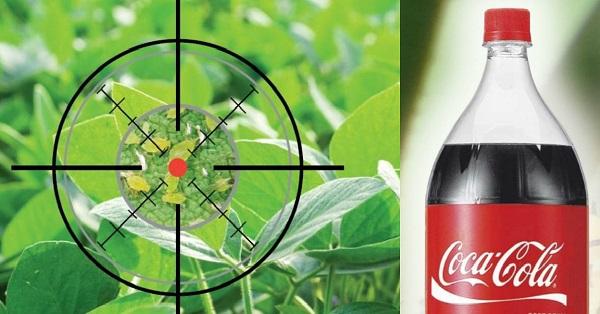 Piedzirdiet laputis ar Coca-Colu līdz nāvei: nāvīgais kokteilis! Nebiju šo dzirdējusi…