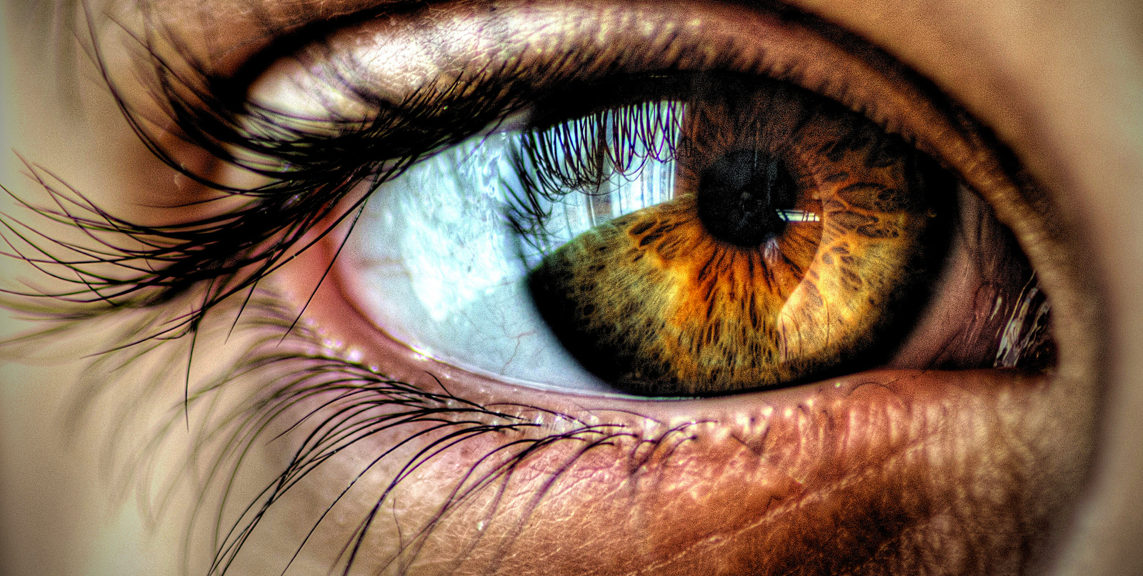 Left eye blinking - twitching for female and male means and causes (4)