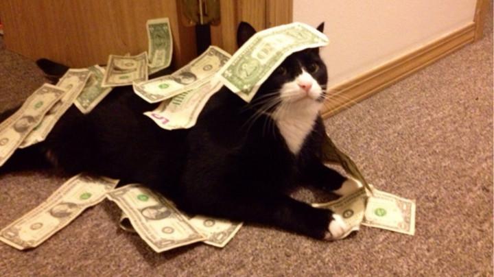 Pazīmes, kuras burtiski ar varu atvilks naudu uz jūsu maciņu!