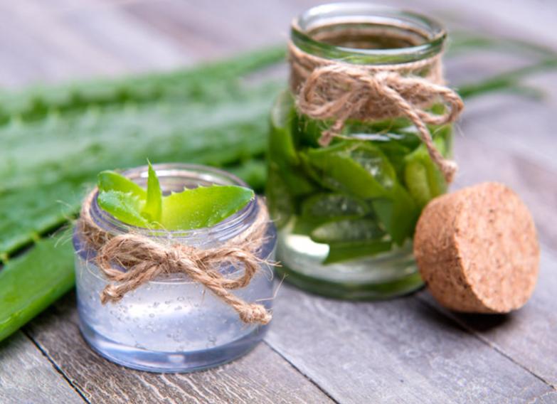 5 alvejas īpašības, kuru dēļ jums to vajadzētu audzēt mājās