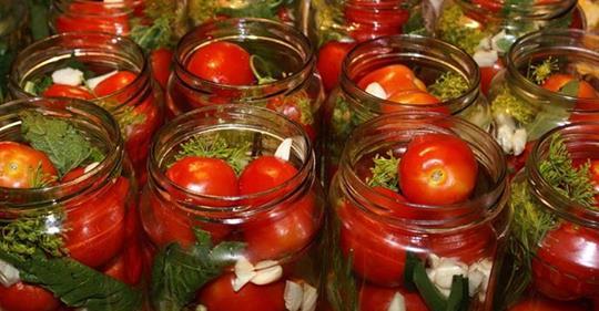 Garšo konservēti tomāti? Ķeriet recepti!