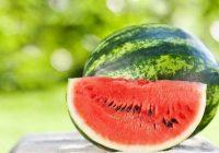 11 augļi un ogu, kurus zinātnieki iesaka ēst ar visiem kauliņiem