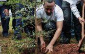 Etiopijā 12 stundās iestādīja 350 miljonus koku!